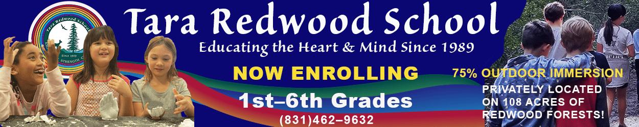 tara-redwood-march-13-june13-2021.v2
