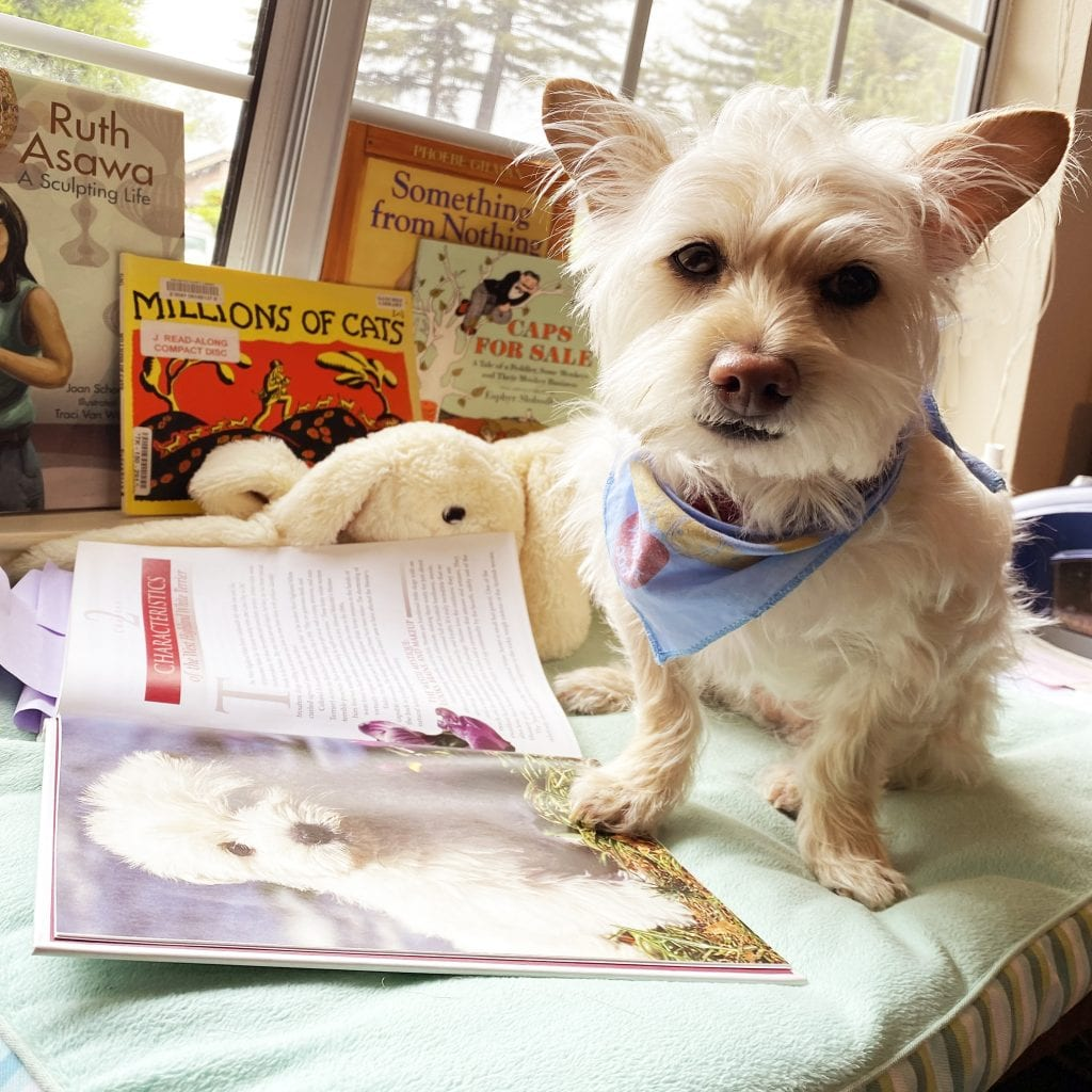 library-tales-to-tails-virtual