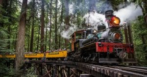 roaring-camp-redwood-forest-train