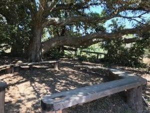 mount-madonna-school-outdoor-classroom