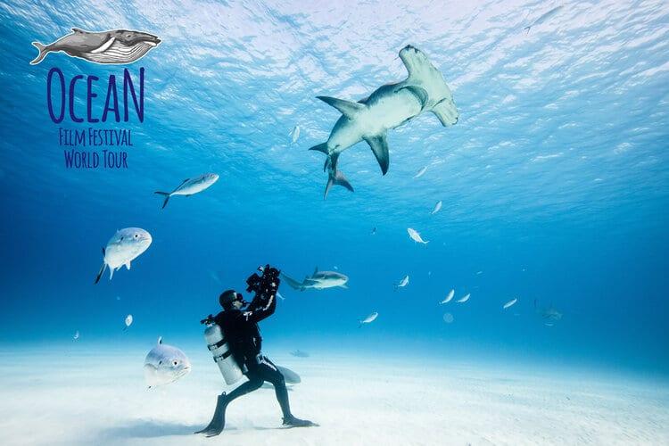 rio-ocean-film-festival
