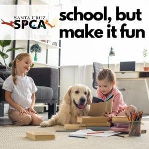 spca-school