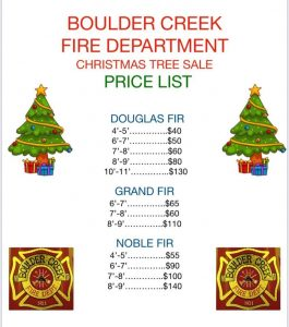 christmas-trees-bc-fire-dept
