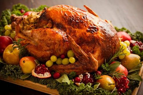 thanks_turkey-delicious