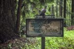 Hike in Byrne-Milliron Forest