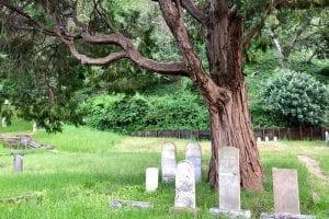 mah-evergreen-beyond-the-grave
