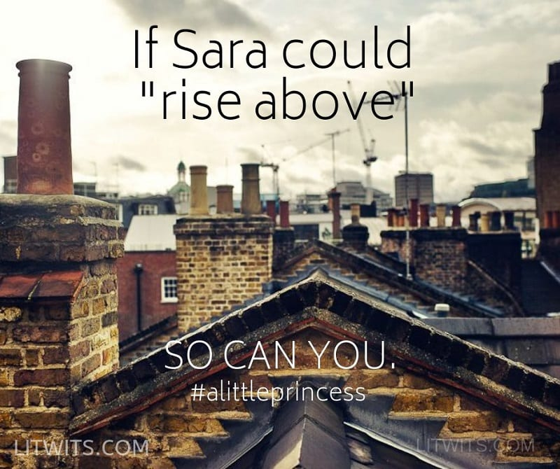 litwits-if-sara-could