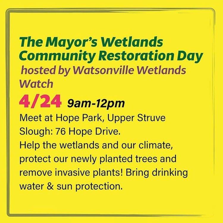 watsonville-wetlands-restoration
