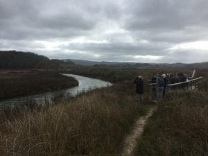park-pescadero-marsh