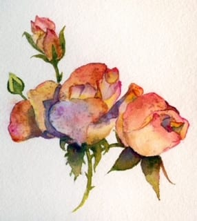 scal-beg-water-color-cynthia-armstrong