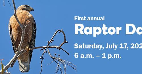 arboretum-raptor-day