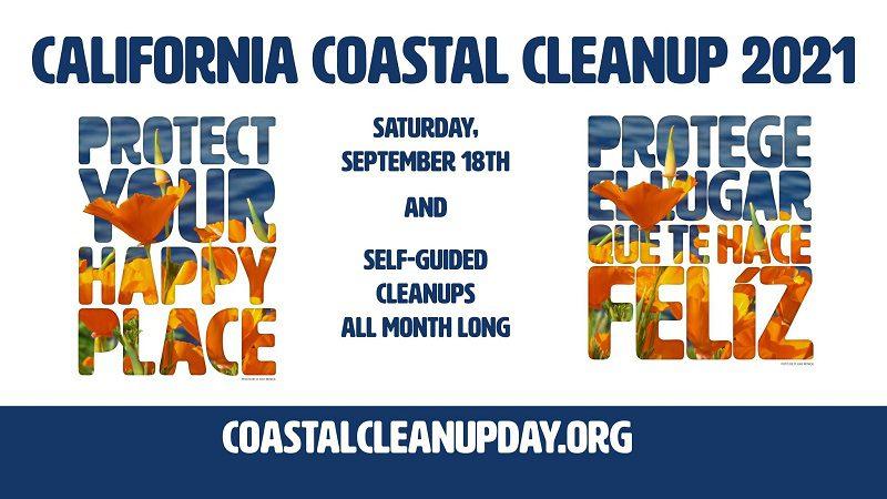 beach-cleanup-annual